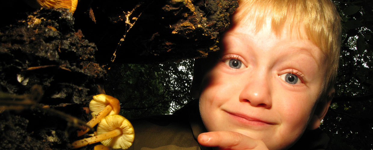 Child pointing at a mushroom