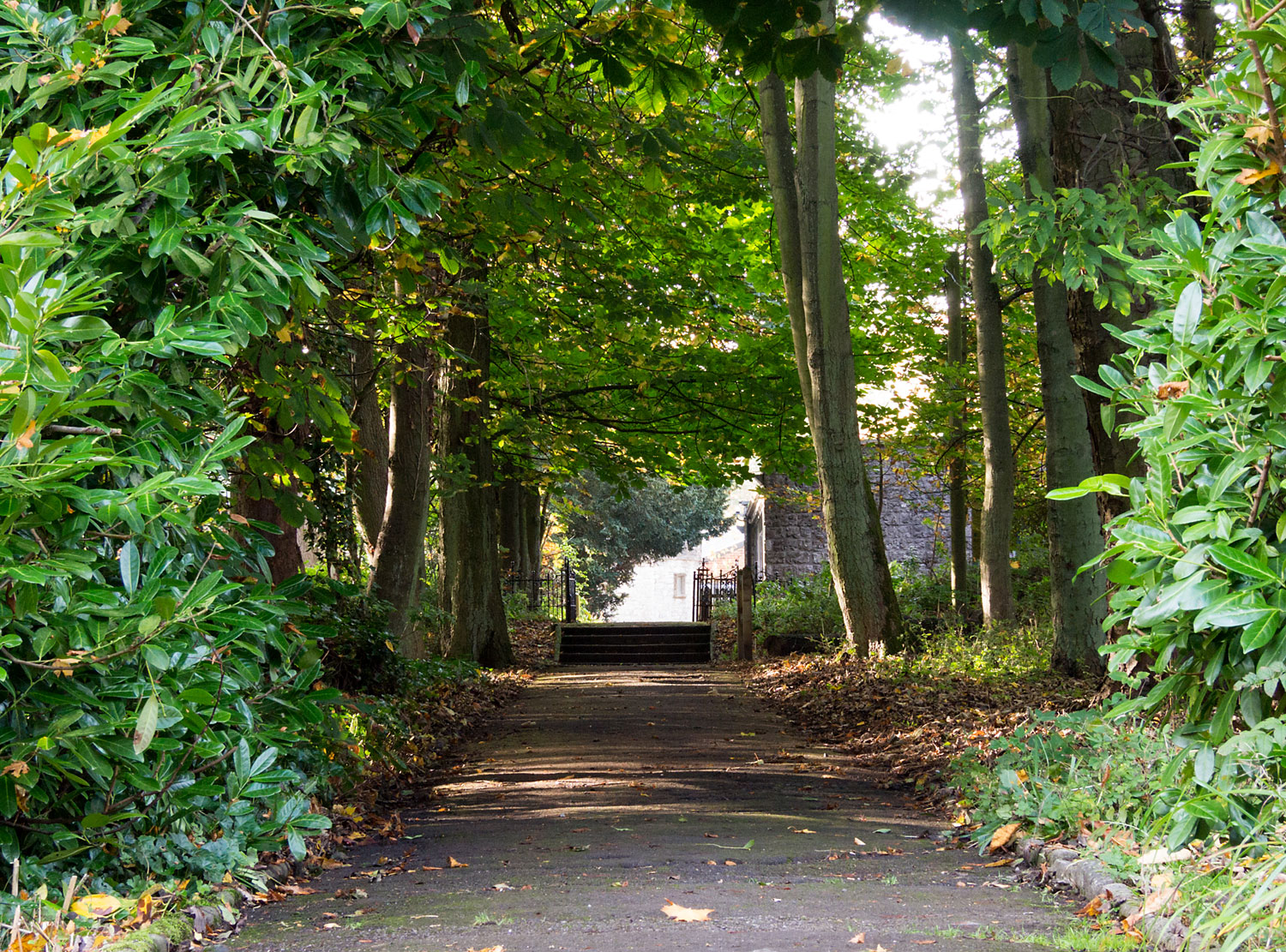 Pathway to the accommodation at Thornbridge Outdoors