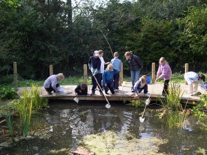 Pupils pond dipping environmental activity) at Thornbridge Outdoors