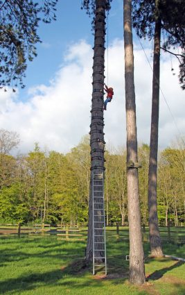 A child climbing up the tree climb (high ropes) at Thornbridge Outdoors