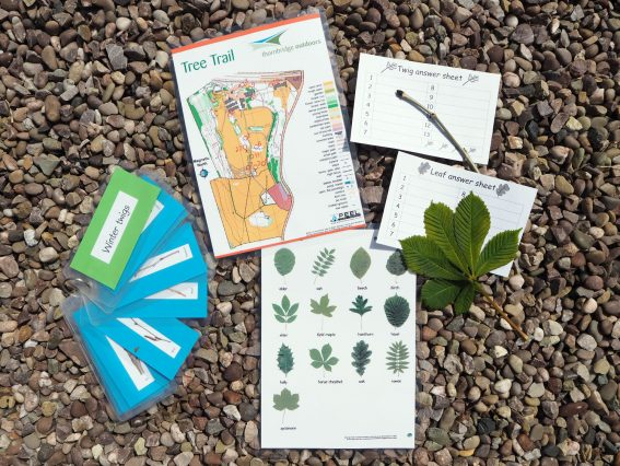 Resources for the tree trail (environmental activity) at Thornbridge Outdoors