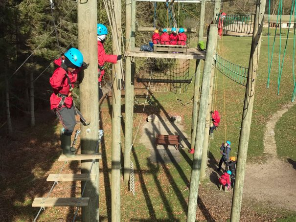 Photo taken from the top of the Sky Ropes on a sunny autumn day shows school children taking on the aerial challenge