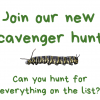 Activity Week 2 – Scavenger Hunt