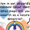 Activity Week 5 – Wizard's Rainbow Colour Hunt