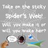 Activity Week 7 – Spider's Web
