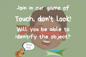 Activity Week 6 – Touch, don't look!