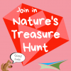 Activity 15 – Nature's Treasure Hunt