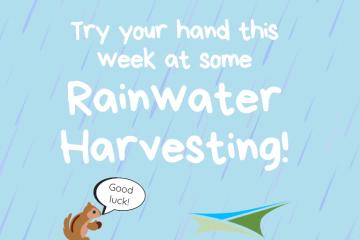 Activity 22 – Rainwater Harvesting